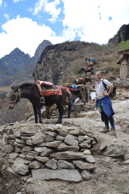 Locals keep donkeys to help tired tourists - if required.
