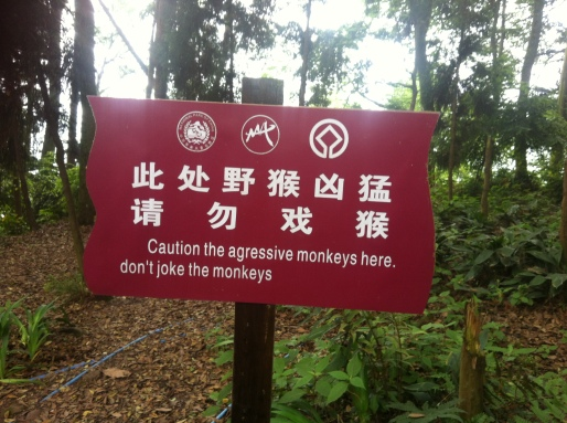 Don't joke the monkey, okay?