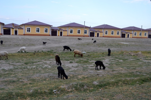 Uzbekistan's version of identikit housing.