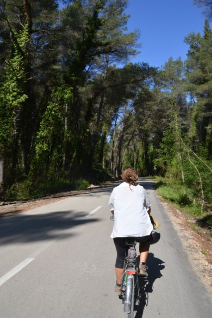 Cycling through the Divjaka-Karavasta national park.